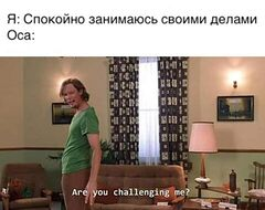 Are you challenging me? meme #1